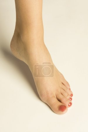 Photo for A Woman's Foot - Royalty Free Image