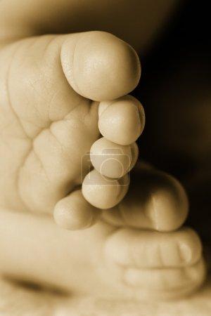 Photo pour Pieds de bébé Gros plan - image libre de droit