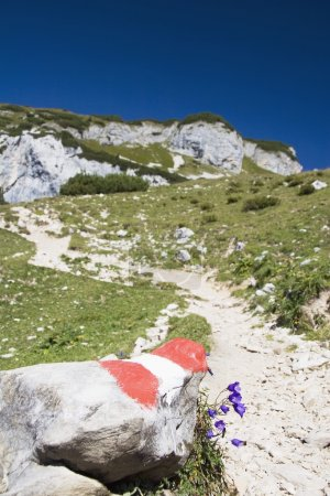 Trail Markings On A Mountain Trail
