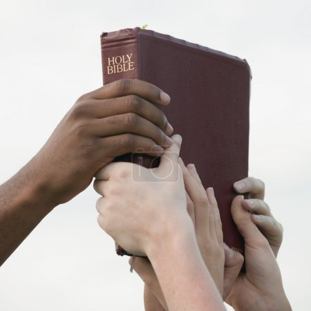 Interracial Hands Holding Up A Bible