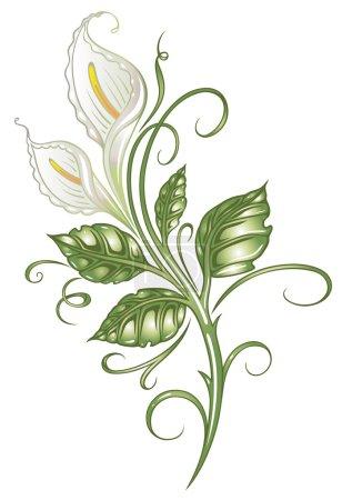 Lilies, flowers