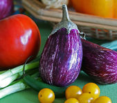 Eggplant with colorful vegetables