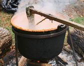 Cooking Apple Butter in a Cast Iron Cauldron