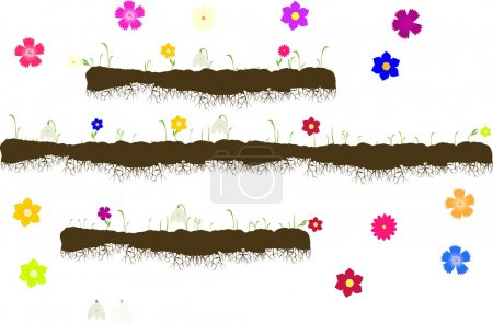 Vector with ground with roots,growing grass with flowers-snowdrops,carnations,forget-me-nots,gerbera,asters