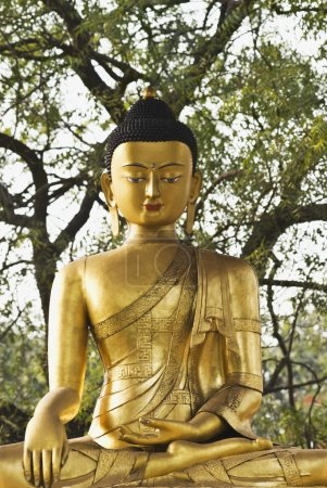Lord Buddha in a park