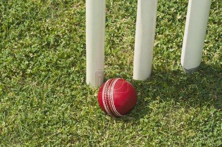 Cricket ball near stumps