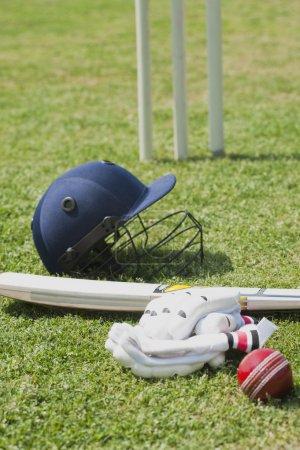 Cricket batting gears