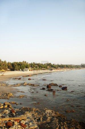 Photo for Rocks on the beach, Goa, India - Royalty Free Image