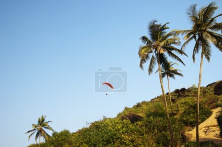 Person paragliding over a hill