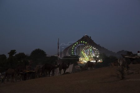 Pushkar Camel Fair at night