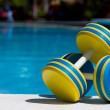Two plastic dumbbells for water aerobics...