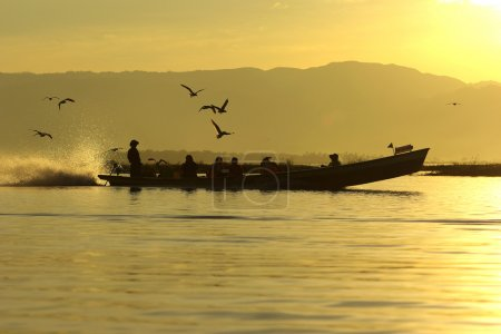 Tourist traditional boat on Inle Lake with birds on morning, Mya