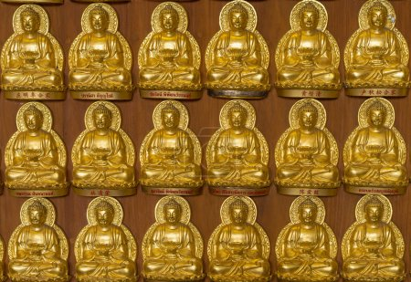 close up a part of ten thousand golden buddhas lined up along th