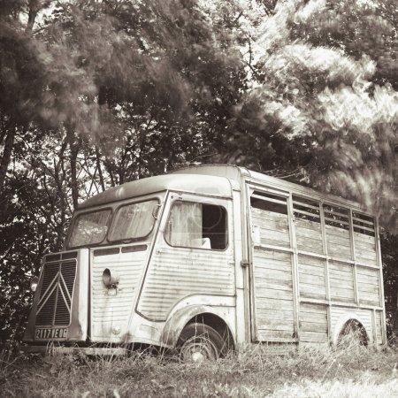 Abandoned Citroen cattle van in field