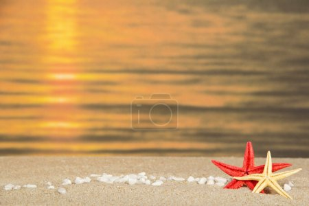 Small pebbles and starfishes against a decline