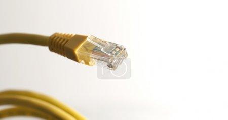 Photo pour Le câble de catégorie 5 (Cat 5) est un câble à paires torsadées pour transporter des signaux. Ce type de câble est utilisé dans le câblage structuré pour les réseaux informatiques tels que Ethernet . - image libre de droit