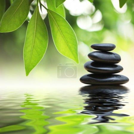 Photo pour Grean laisse sur la pyramide de pierres zen sur la surface de l'eau - image libre de droit