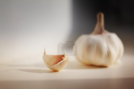 Photo for Garlic on kitchen table, macro closeup. - Royalty Free Image