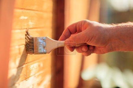 Photo pour Mur de bois peinture main mâle - image libre de droit