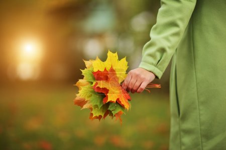 Photo for Female hand with colorful bouquet of autumn leaves. Closeup. - Royalty Free Image