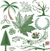 Clip art collection of various leaves trees and flowers
