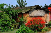China Red Salvia Flowers and Old Brick Barn