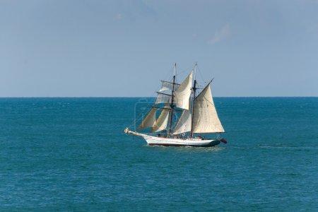 Sailing ship in Camogli
