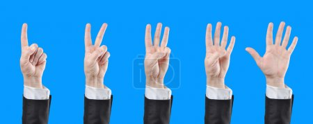 Businessman counting hands on blue background...