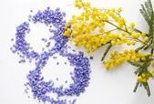 Internationalen Frauen Tag Mimosa Blume