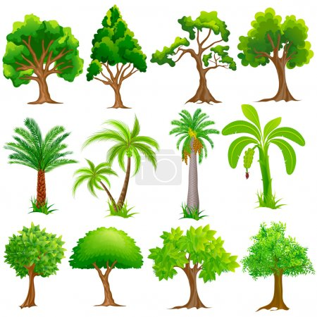 Easy to edit vector illustration of Tree Collectio...