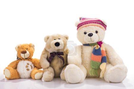 Three toy teddy bears