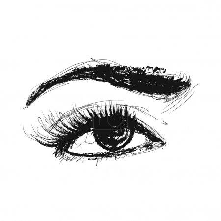 Eye Vector Pencil Drawing