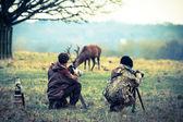 Fotografové, přičemž fotografie jelenů