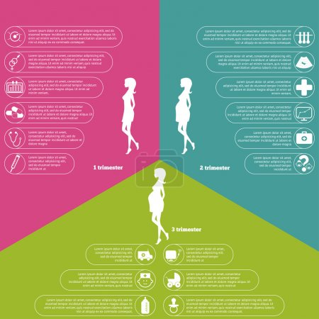 Illustration for Pregnancy and birth infographics and pregnancy stages and icon set. - Royalty Free Image