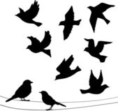 Set of birds silhouettes - flying sitting