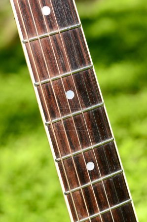 Photo for Acoustic guitar in the grass in the forest - Royalty Free Image