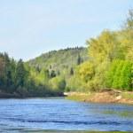 Gauja river in spring morning in Sigulda, Lativa...
