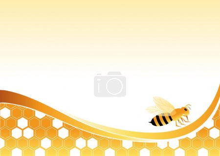 Bee on Honey Cells