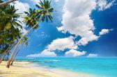 Beautiful beach in southern Sri Lanka