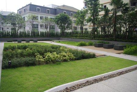 Condominium garden