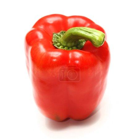 Foto de Pimienta dulce rojo sobre fondo blanco - Imagen libre de derechos
