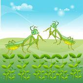 Praying mantis grasshopper cartoon