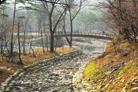 beautiful landscape at Seoraksan Korea.