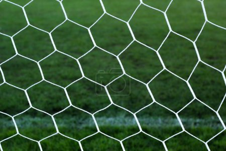 Goal football - soccer nets with green grass
