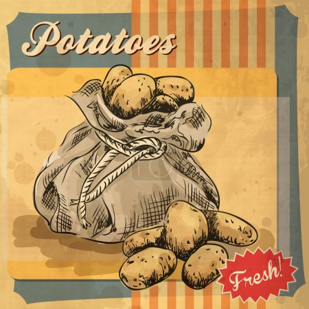 Vintage poster template for potato farm.