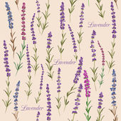 Seamless pattern with lavender.