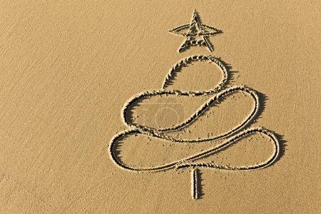 Photo pour Arbre de Noël d'images dans le gros plan côte de plage de sable - image libre de droit