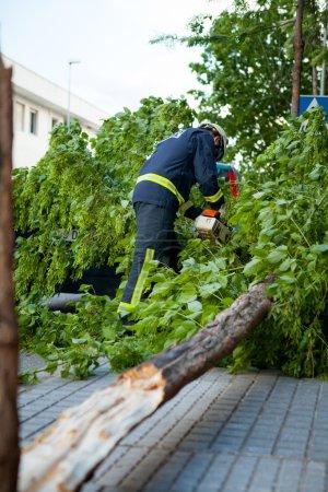 Fire fighters cutting fallen tree