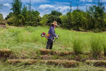 Photo pour Agriculteur fait tondeuse à gazon - image libre de droit