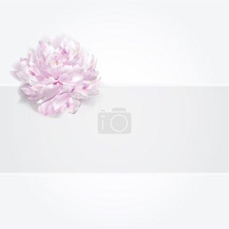 Illustration pour Luxe rose fond pivoine blanche, illustration vectorielle, invitation de carte d'anniversaire de mariage - image libre de droit